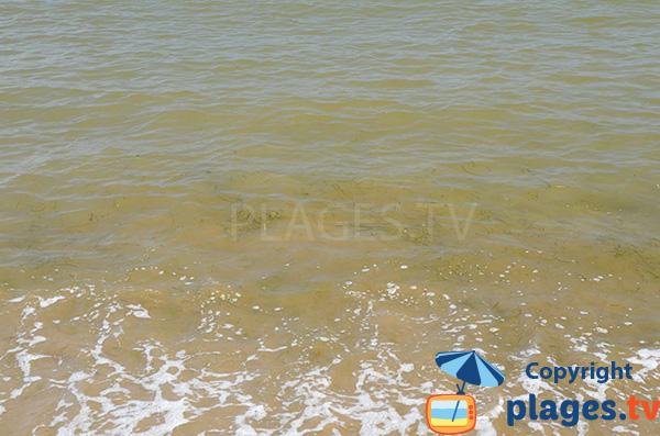 Eau trouble sur la plage de l'Arenal à l'Ampolla