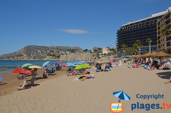 Chaises longues à louer sur la plage à Calpe - Espagne