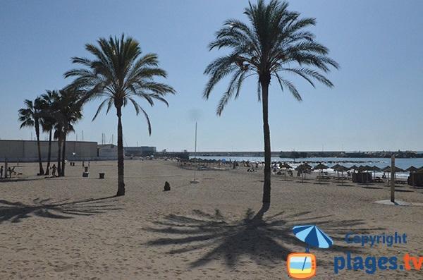 Plage à côté du port de Bajadilla à Marbella - Andalousie