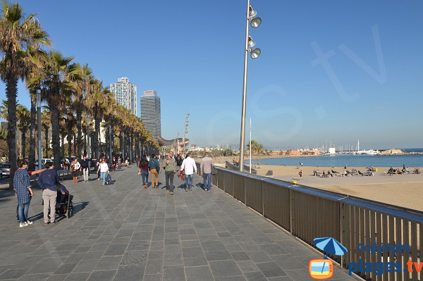 Promenade le long de la plage de Barceloneta à Barcelone