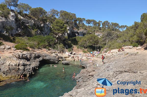 Photo de la plage dans la cala Almunia à Majorque