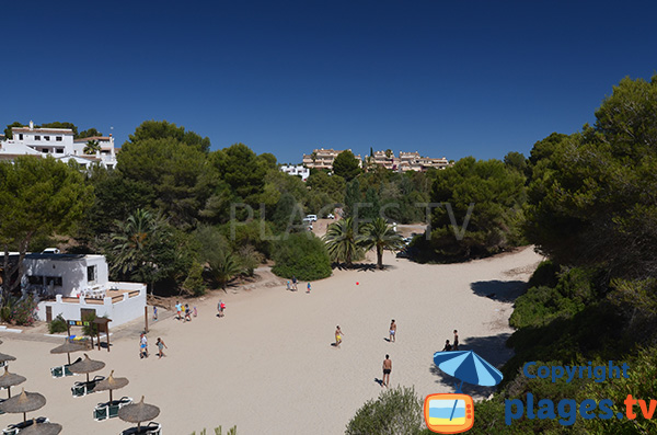 Arrière plan de la plage de Cala Anguila à Majorque - Porto Cristo