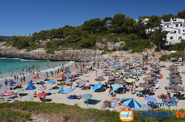 Chaises longues sur la plage de Cala Anguila - Majorque