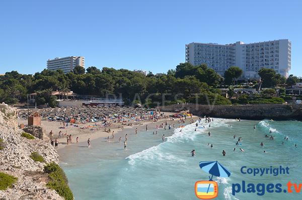 Baignade sur la plage de Cala Domingos à Cala Tropicana - Majorque