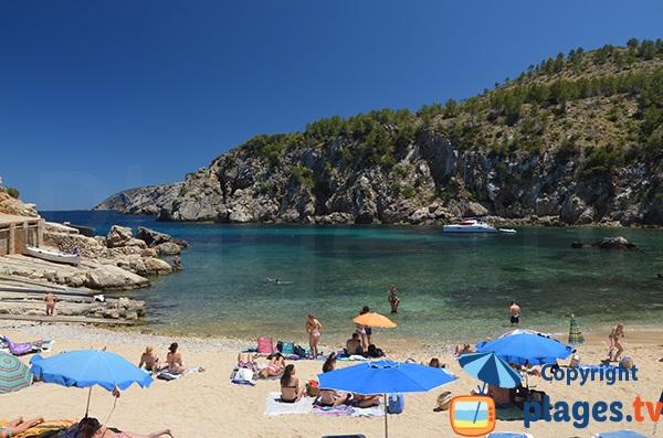 Crique avec des eaux claires dans le Nord d'Ibiza - Cala en Serra