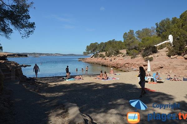 Plage ombragée à Sant Antoni - Ibiza