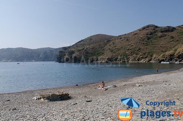 Photo de la plage de Cala Joncols à Roses en Espagne