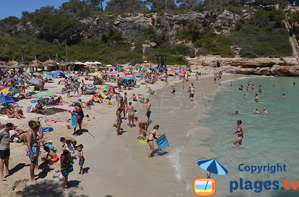 Plage de sable dans la Cala Llombards à Majorque
