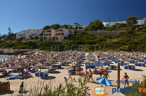 Chaises longues sur la plage de Cala Mendia - Porto Cristo