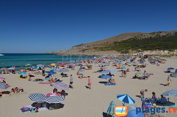 Belle plage à Cala Mesquida - Ile de Majorque