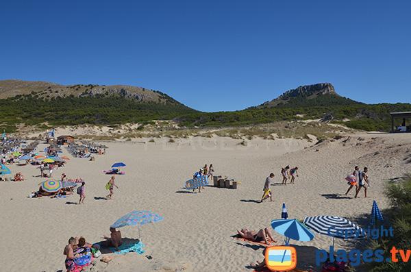 Grande plage au nord-est de Majorque - Cala Mesquida
