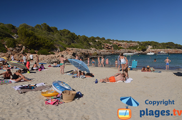Photo de la plage de Cala Sa Nau à Majorque