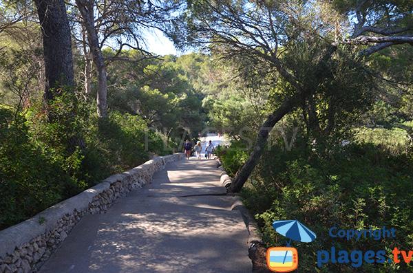 Sentier d'accès à la Cala Sa Nau - Majorque