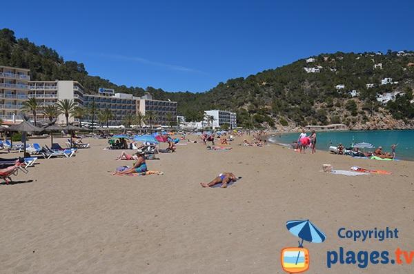 Plage et hôtels à Cala de Sant Vicent