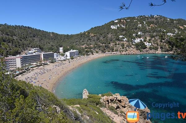 Photo de la plage de la Cala Sant Vicent à Ibiza