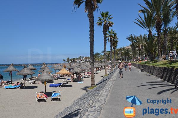 Promenade piétonne le long de la plage de Camison - Los Cristianos