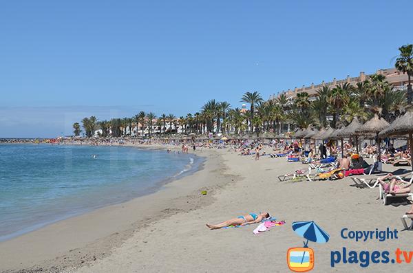 Photo de la plage de Camison à Los Cristianos - Tenerife