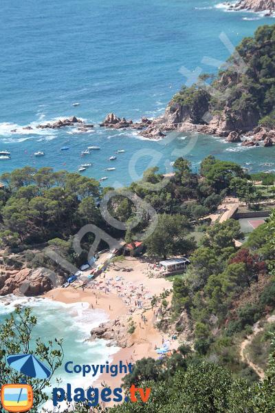 Crique au sud entre Sant Feliu de Guíxols et Tossa del Mar