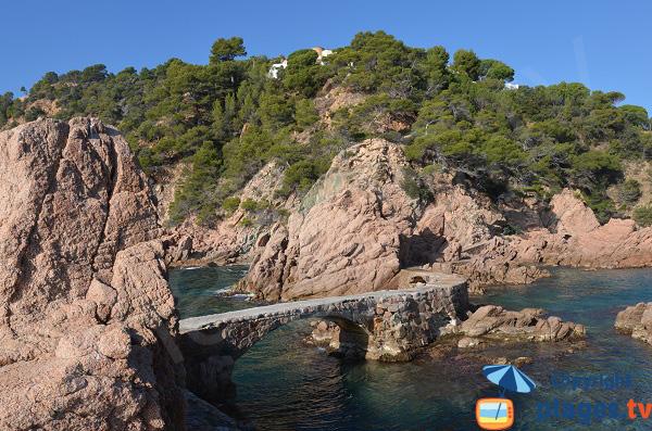 Récif de Canyet en Espagne