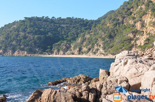 Plage naturiste à Santa Cristina d'Aro entre Sant Feliu de Guíxols et Tossa del Mar