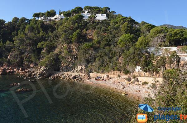 Photo de la plage de Canyet à Sant Feliu de Guíxols en Espagne