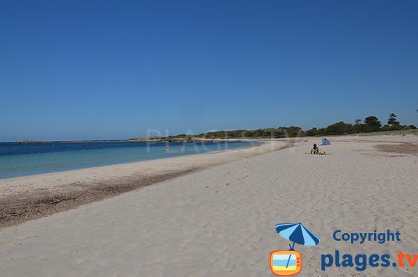 Plage de Caragol sur l'ile de Majorque aux Baléares