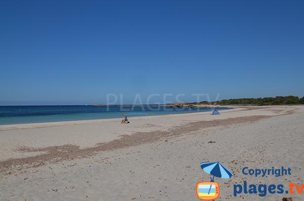 Photo de la plage de Caragol aux Baléares - Majorque