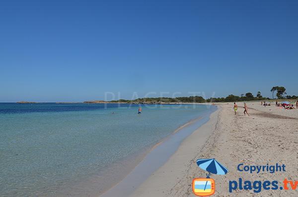 Baignade sur la plage de Caragol à Majorque