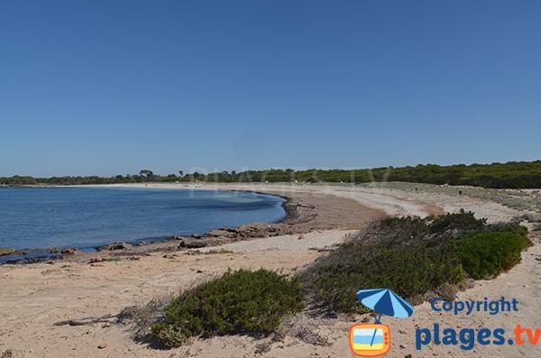 Plage au sud de l'ile de Majorque à proximité du phare des Salines