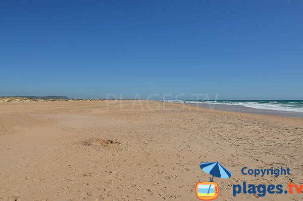 Photo de la plage de Castilnovo - Conil