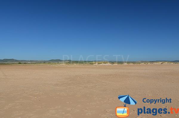 Dunes de la plage de Castilnovo à Conil