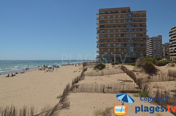 Dunes sur la plage du Centre d'Arenals del Sol