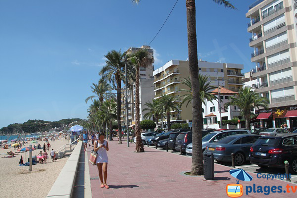 Seaside front of Lloret de Mar in spain