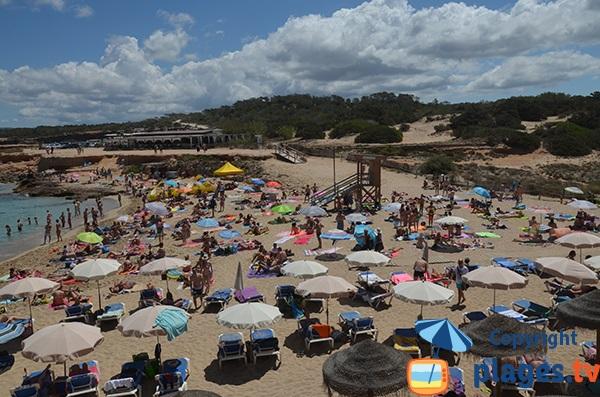 Chaises longues sur la plage Comte - Ibiza