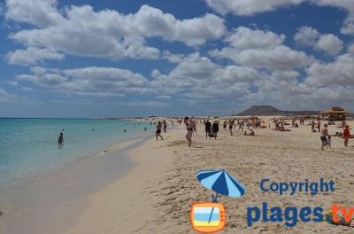 Plage à Corralejo aux Canaries - fuerteventura