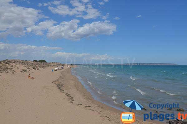 Plage au nord de la marina del Pinet en Espagne - Elche