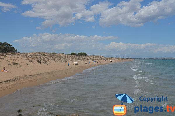 Plage naturiste à El Pinet - Espagne