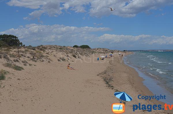 Photo de la plage des dunes de Pinet à Elche - La Marina