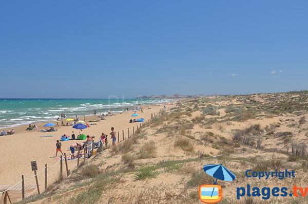 Grande plage sauvage à proximité de Guardamar - El Moncaio