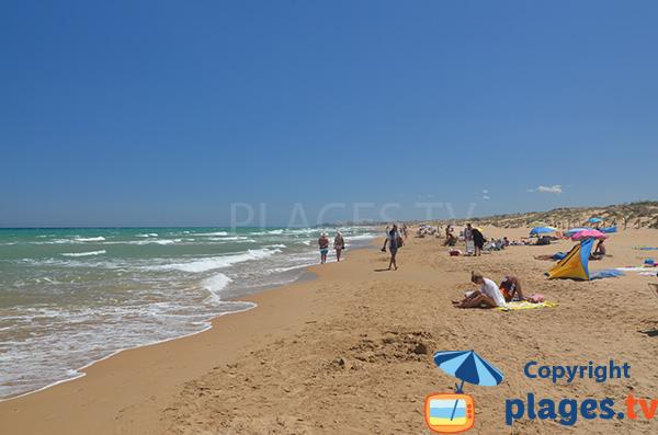 Baignade sur la plage d'El Moncaio à Guardamar
