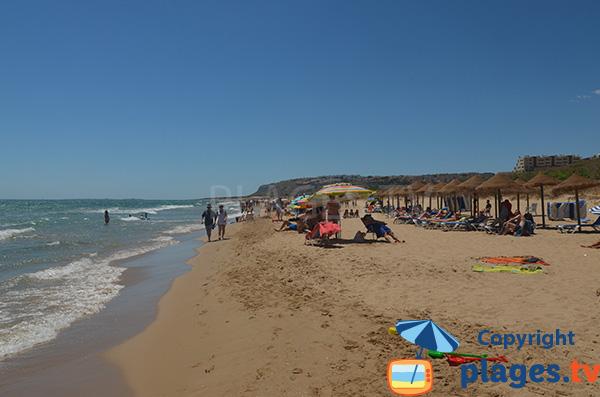 Plage privée sur la plage de Elche à Los Arenales del Sol - Espagne