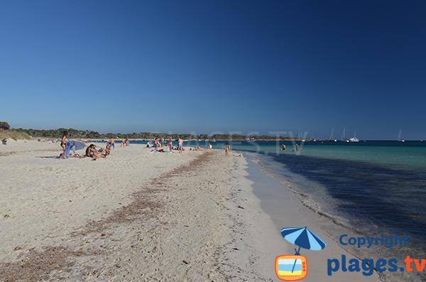 Photo de la plage Es Carbo à Majorque - Colonia de Sant Jordi