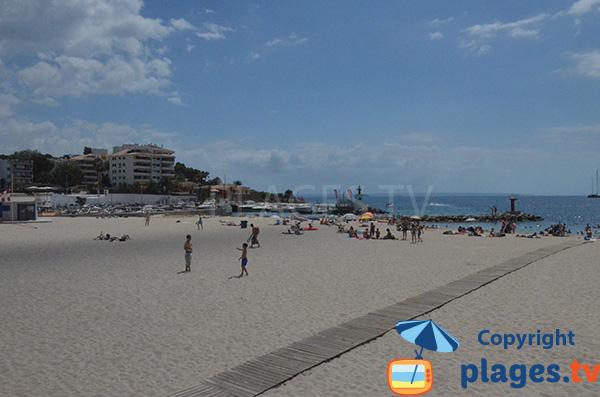 Côté gauche de la plage de Es Carregador à Palmanova - Majorque