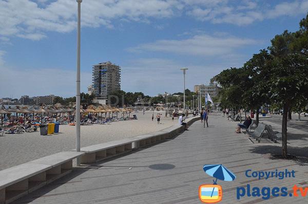 Promenade piétonne le long de la plage de Es Carregador à Palmanova