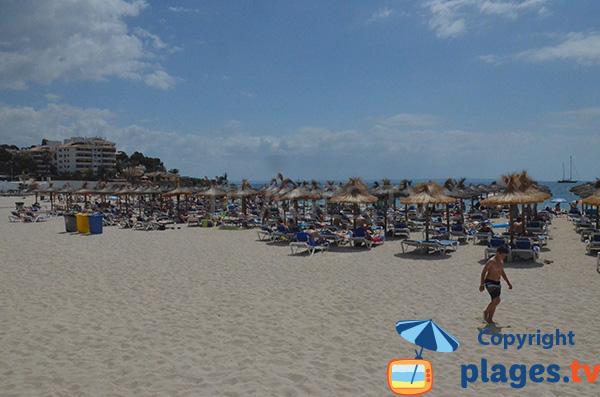 Chaises longues sur la plage de Es Carregador à Palmanova à proximité de Magaluf