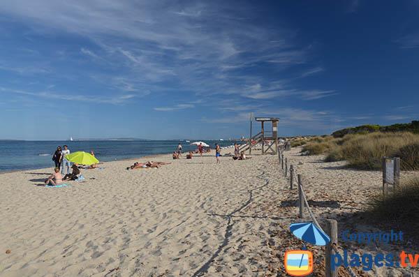 Photo de la plage Cavallet à Ibiza