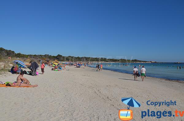 Belle plage de sable sauvage à proximité du port de Colonia de Sant Jordi - Majorque