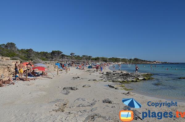 Rochers sur la plage d'Es Dolc à Colonia de Sant Jordi - Majorque
