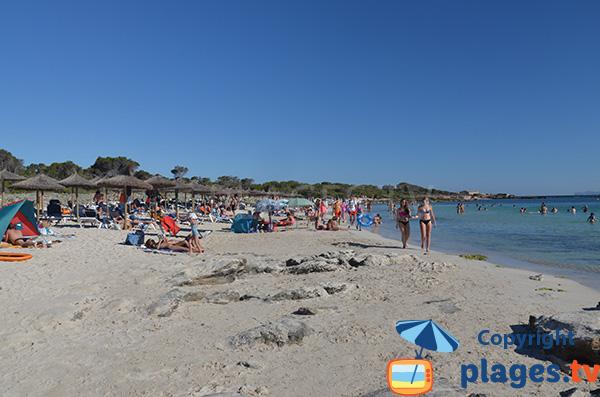 Zone privée sur la plage d'Es Dolc à Colonia de Sant Jordi - Baléares