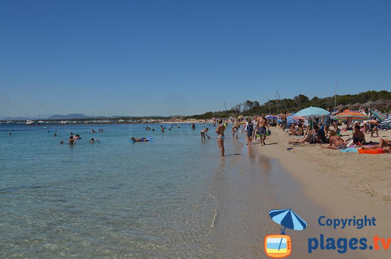 Belle plage dans le centre de Colonia de Sant Jordi à Majorque